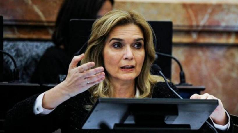 Elías de Pérez aclaró su voto negativo en repudio al golpe de Estado en Bolivia - el tucumano