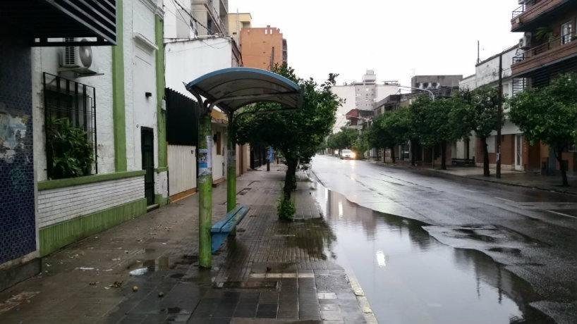 La calma después de la tormenta: ¿cómo estará el clima este domingo?