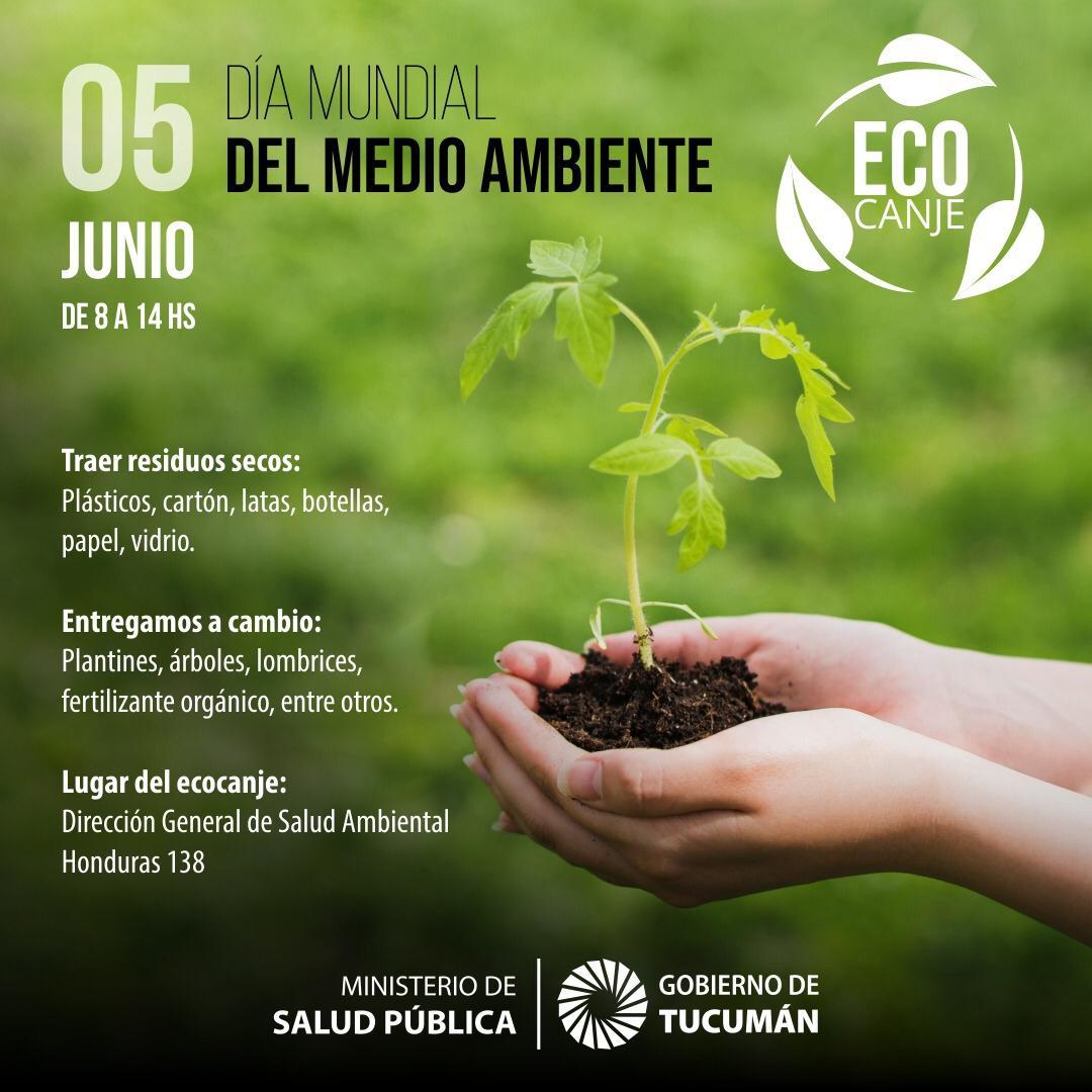 Agendá!: habrá múltiples actividades para celebrar el Día Mundial ...